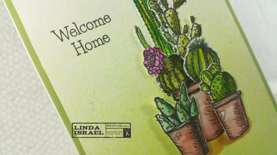 How to make a cactus themed greeting card