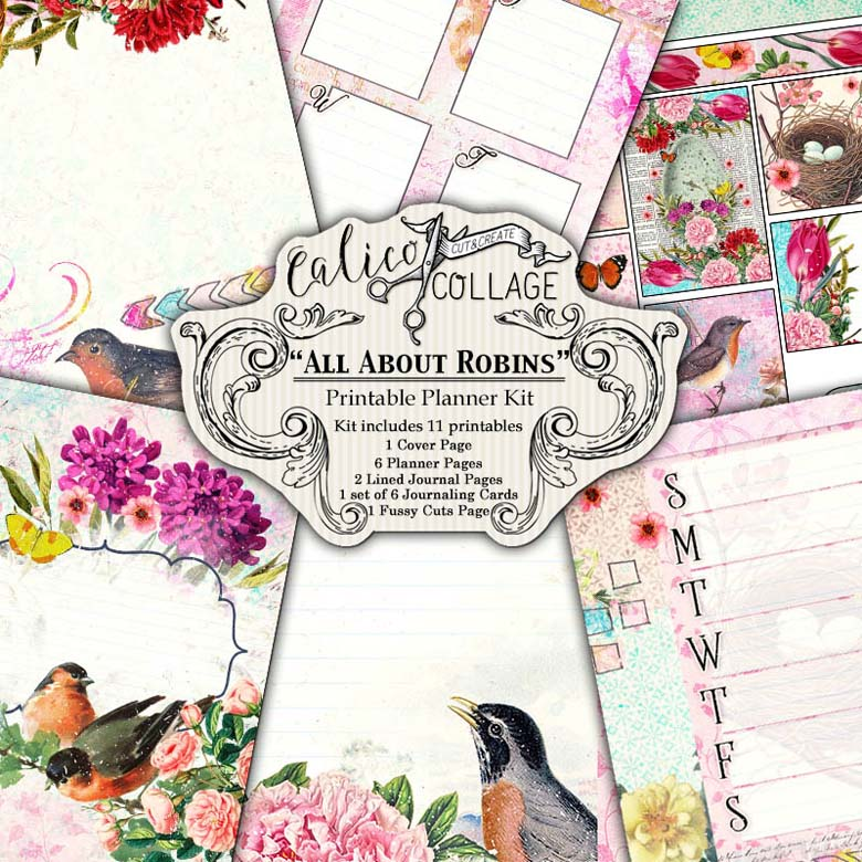 All About Robins Digital Planner Kit