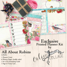 All About Robins Printed Planner Journal Kit