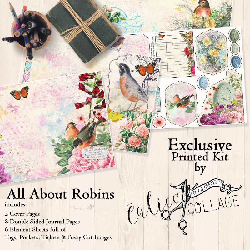 All About Robins Printed Large Journal Kit