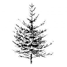 HO103D Pine Tree Small