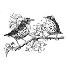 CFF235E Robins Rubber Stamp