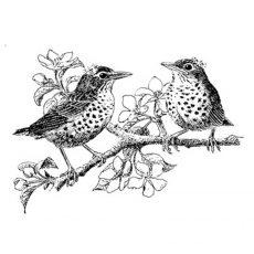 CFF235E Robins Rubber Stamp