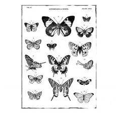 CFF631G Butterfly Collection Rubber Stamp