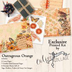 Rainbow Box Outrageous Orange