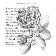 CFF600F Campion Rose Rubber Stamp