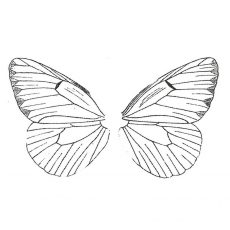 CWP117F Butterfly Wing Set Med rubber Stamps