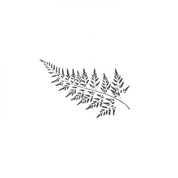 CFF323D Fern Small Rubber Stamp