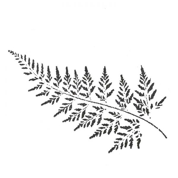 CFF325G Fern Lg Rubber Stamp