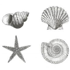 Beach-Sea-Ship Rubber Stamps and Stencils