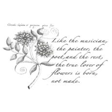 CFF606F Flower Lover Rubber Stamp