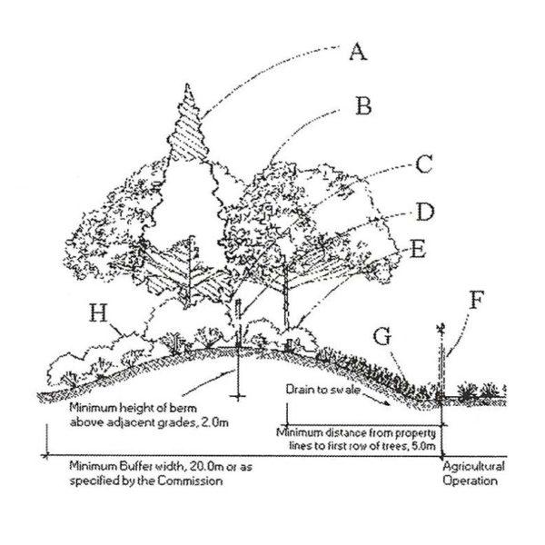 FF622E Garden Plan B Rubber Stamp