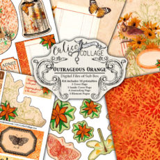 Outrageous Orange Digital Creative Box Journal Kit