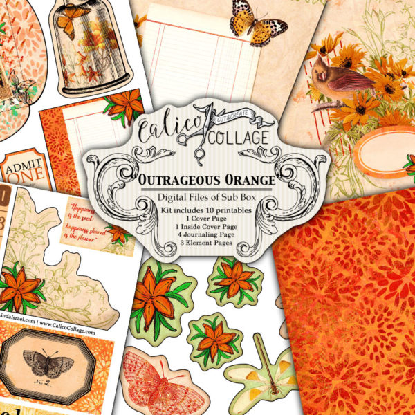 Outrageous Orange Digital Creative Box Journal Kit