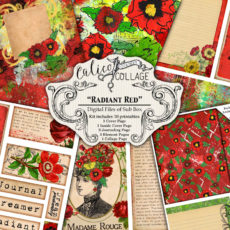 Radiant Red Digital Creative Box Journal Kit