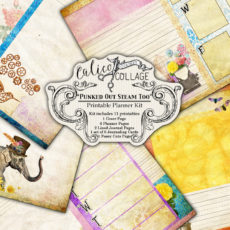 Punked Out Steam Too Digital Planner Kit