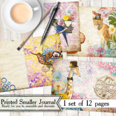 Mini Punked Out Steam Too Printed Journal Kit