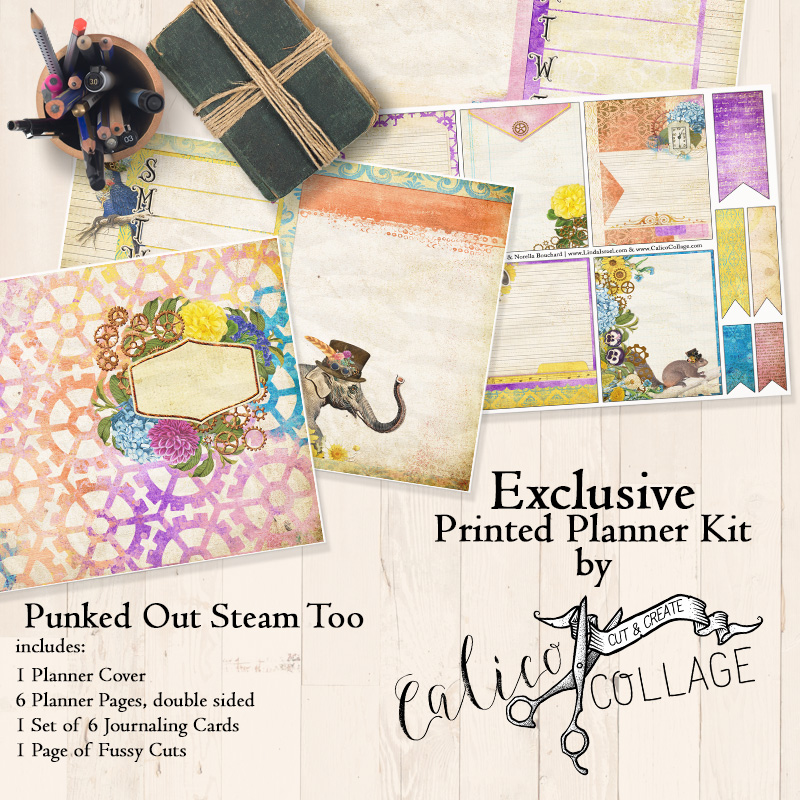 Punked Out Steam Too Printed Planner Kit