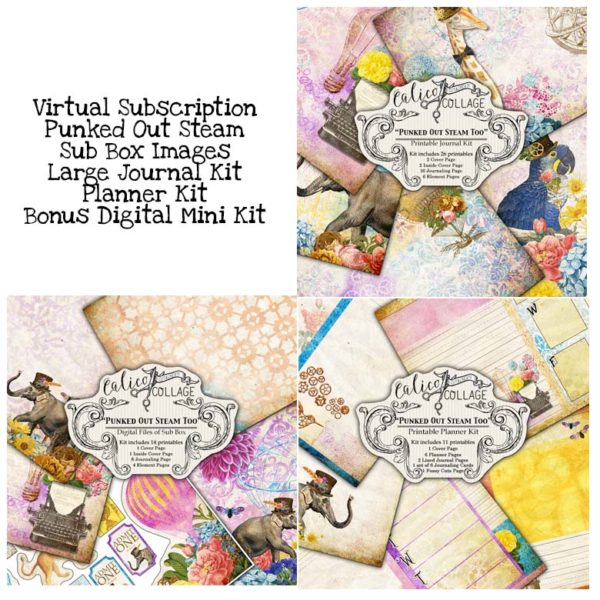 Virtual Subscription Punked Out Steam Too Digital Journal Kit