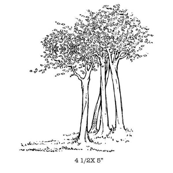 CFF525G Tree Grove Rubber Stamp