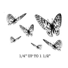 CFF629G Butterfly Cube