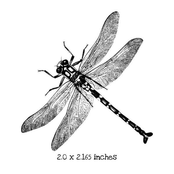 BD103D Dragonfly 1 Rubber Stamp