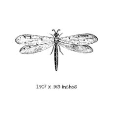 BD104D Dragonfly 2 Rubber Stamp