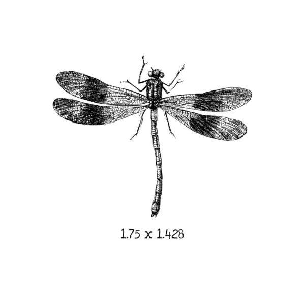 BD105D Dragonfly 3 Rubber Stamp