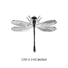 BD106D Dragonfly 4 Rubber Stamp