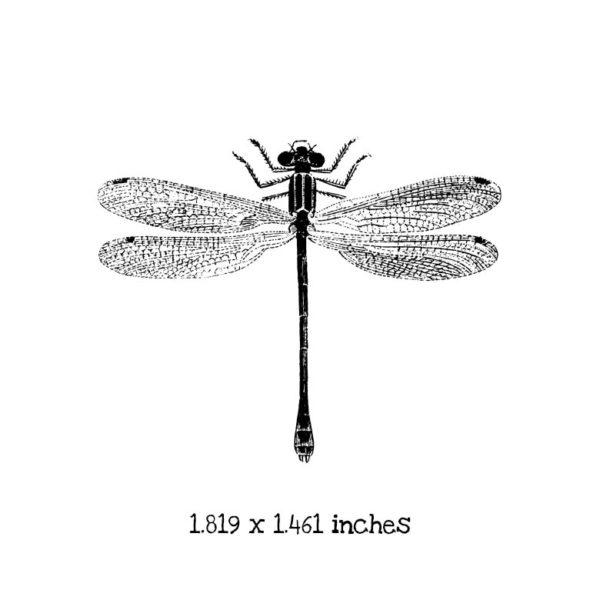BD106D Dragonfly 4 Rubber Stamp