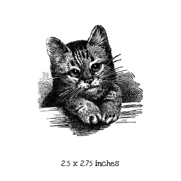 CK103D Cute Kitten Rubber Stamp