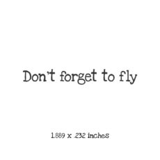 WF106A Don't forget to fly Rubber Stamp
