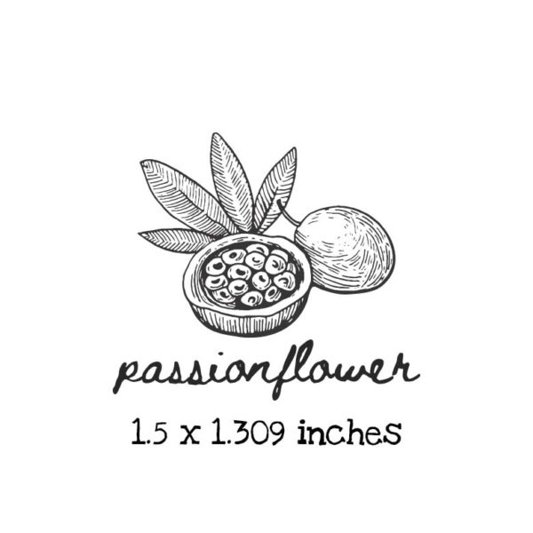 AP202C Passionflower Rubber Stamps