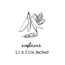 AP204C Soybeans Rubber Stamps