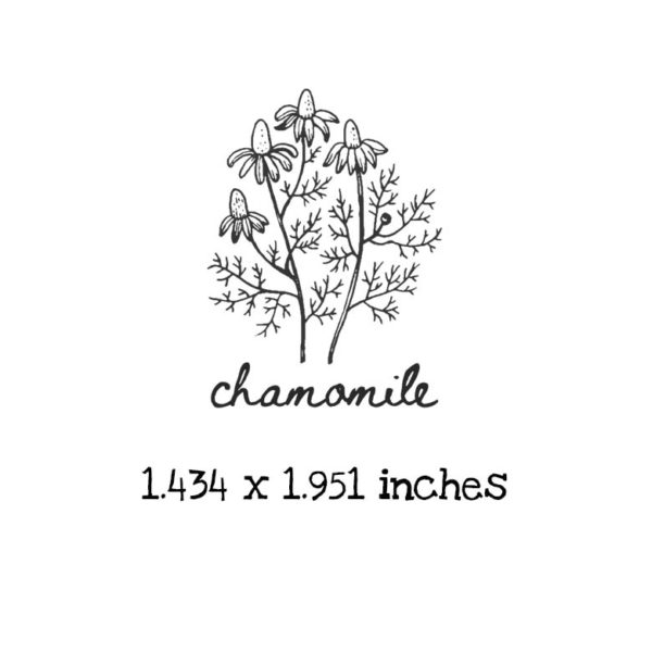 AP205C Chamomile Rubber Stamps