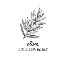 AP210C Olive Rubber Stamps
