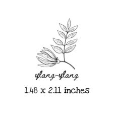 AP212C Ylang-Ylang Rubber Stamps