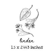 AP217C Linden Rubber Stamps