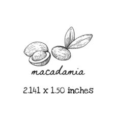 AP223C Macadamia Rubber Stamps