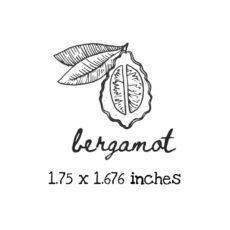 AP229C Bergamot Rubber Stamps